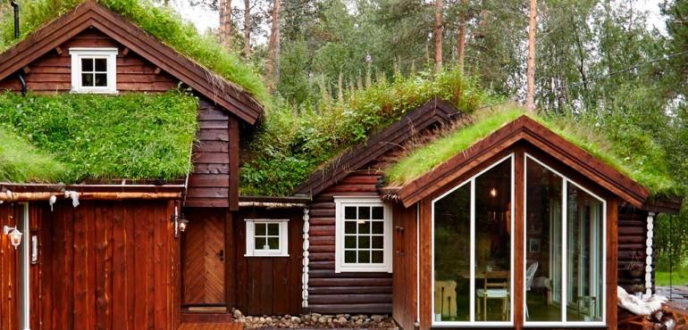 Зеленый коттедж посреди леса