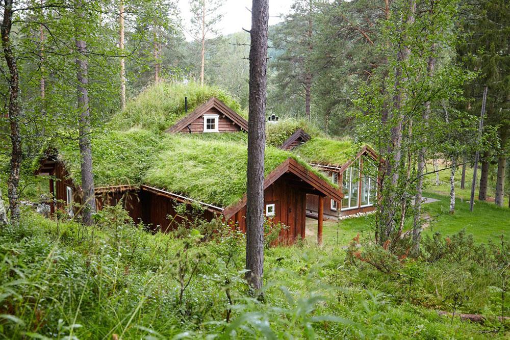 крыша с травы