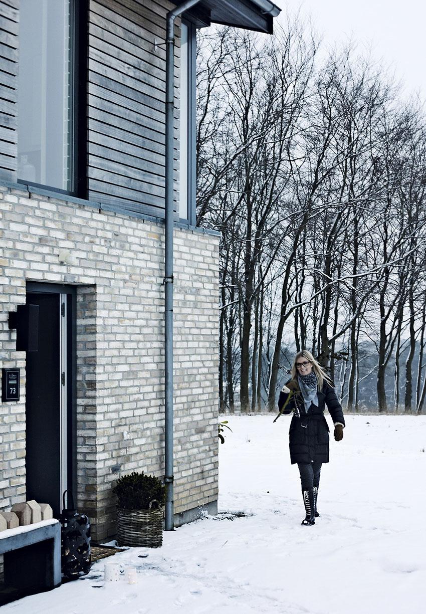 дом в Дании