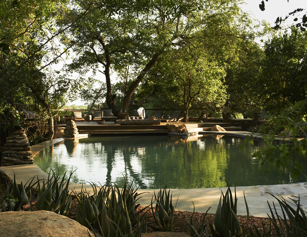 бассейн фото