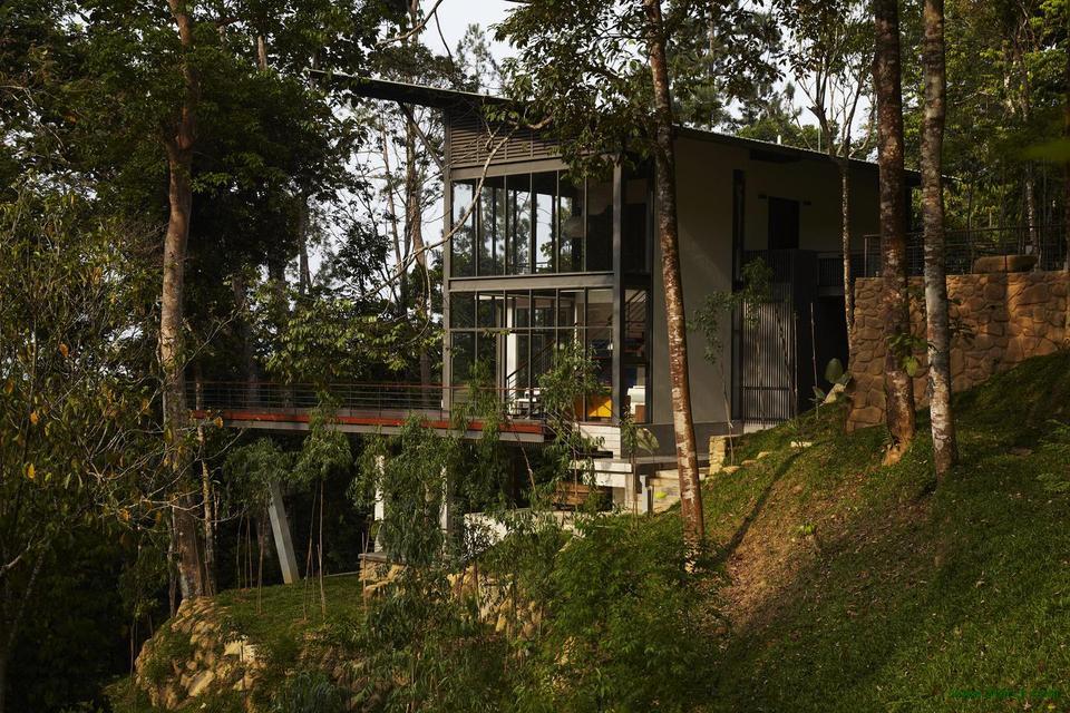 Дом с панорамными окнами посреди леса