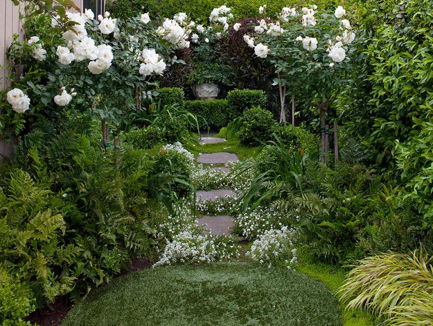 дизайн саду своїми руками