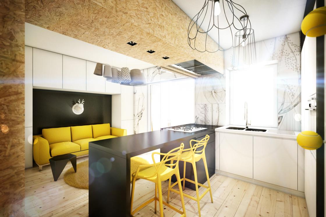Дизайн кухни-гостиной: 16 готовых решений