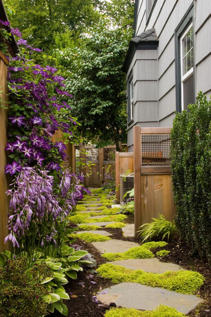 Садовая дорожка на даче фото