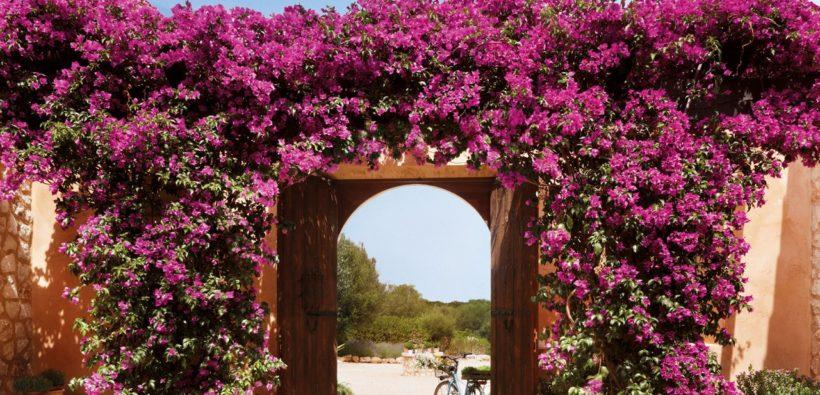 Испанский дом с роскошным садом