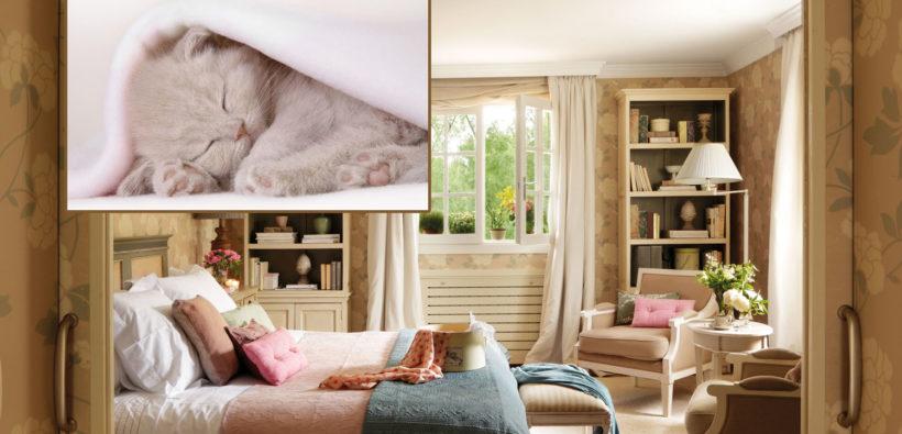 14 спален, в которых хочется сладко уснуть