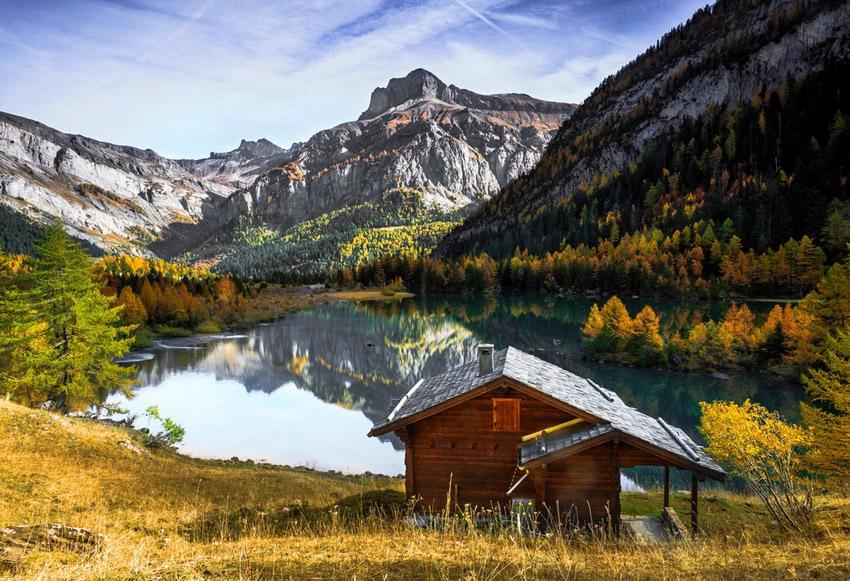 Фотоохота: 21 домик в лесу