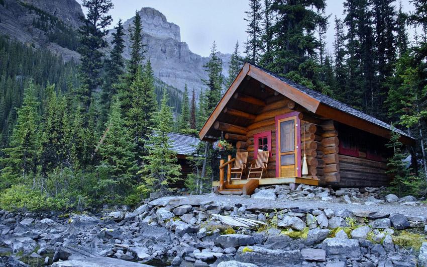 фото домик в лесу