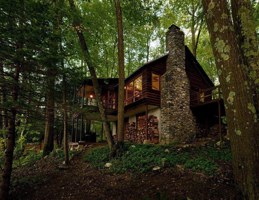 лес и дом