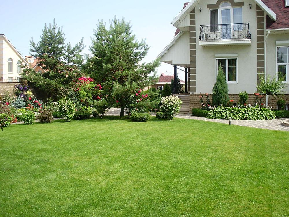 Искусственная трава: за и против