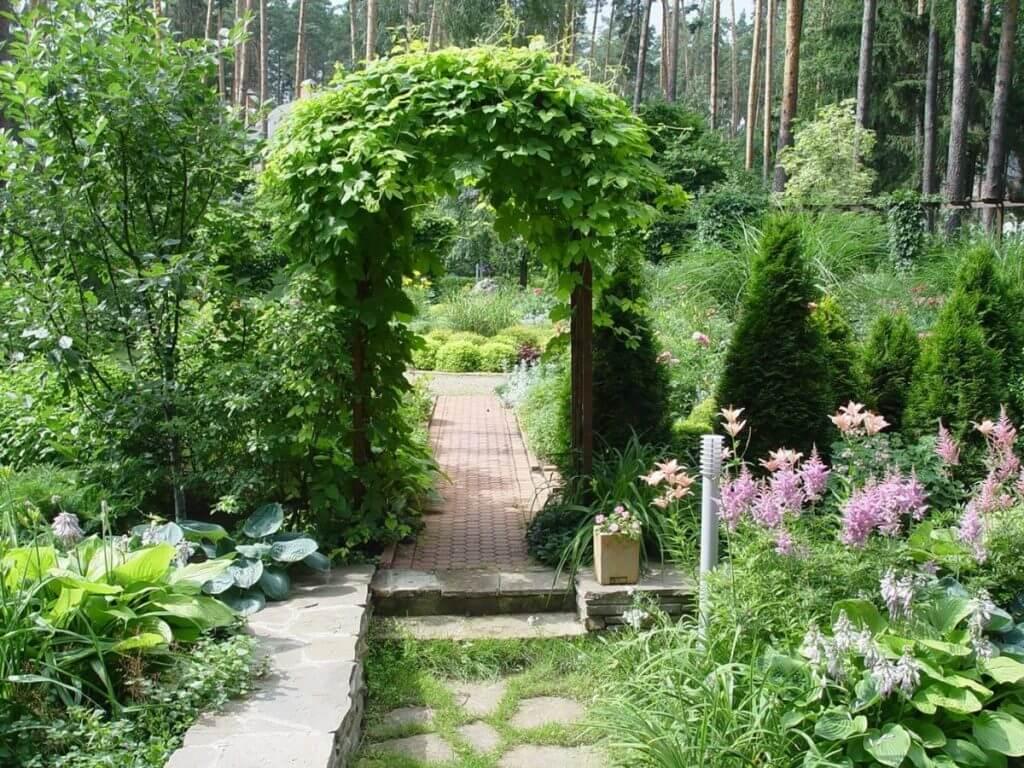 Ландшафтный дизайн двора частного дома своими руками
