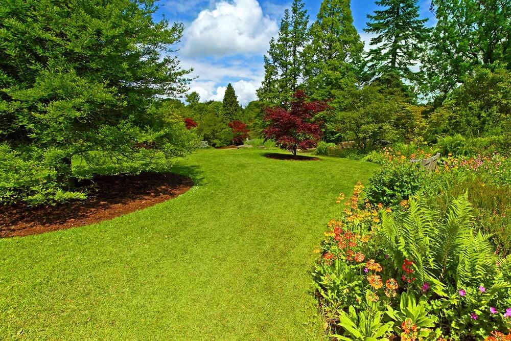Ландшафтный дизайн лесного участка